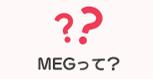 MEGって?